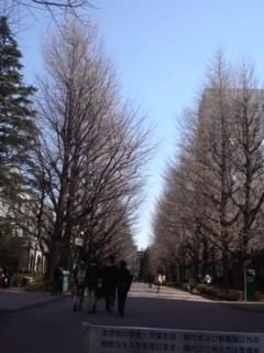 お散歩日和☆